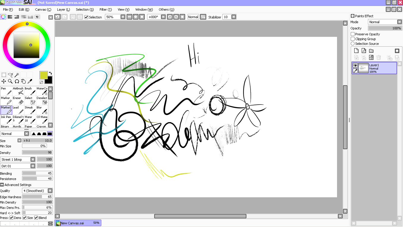 Mirror Canvas Paint Tool Sai